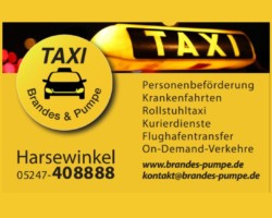 Taxi Brandes & Pumpe UG